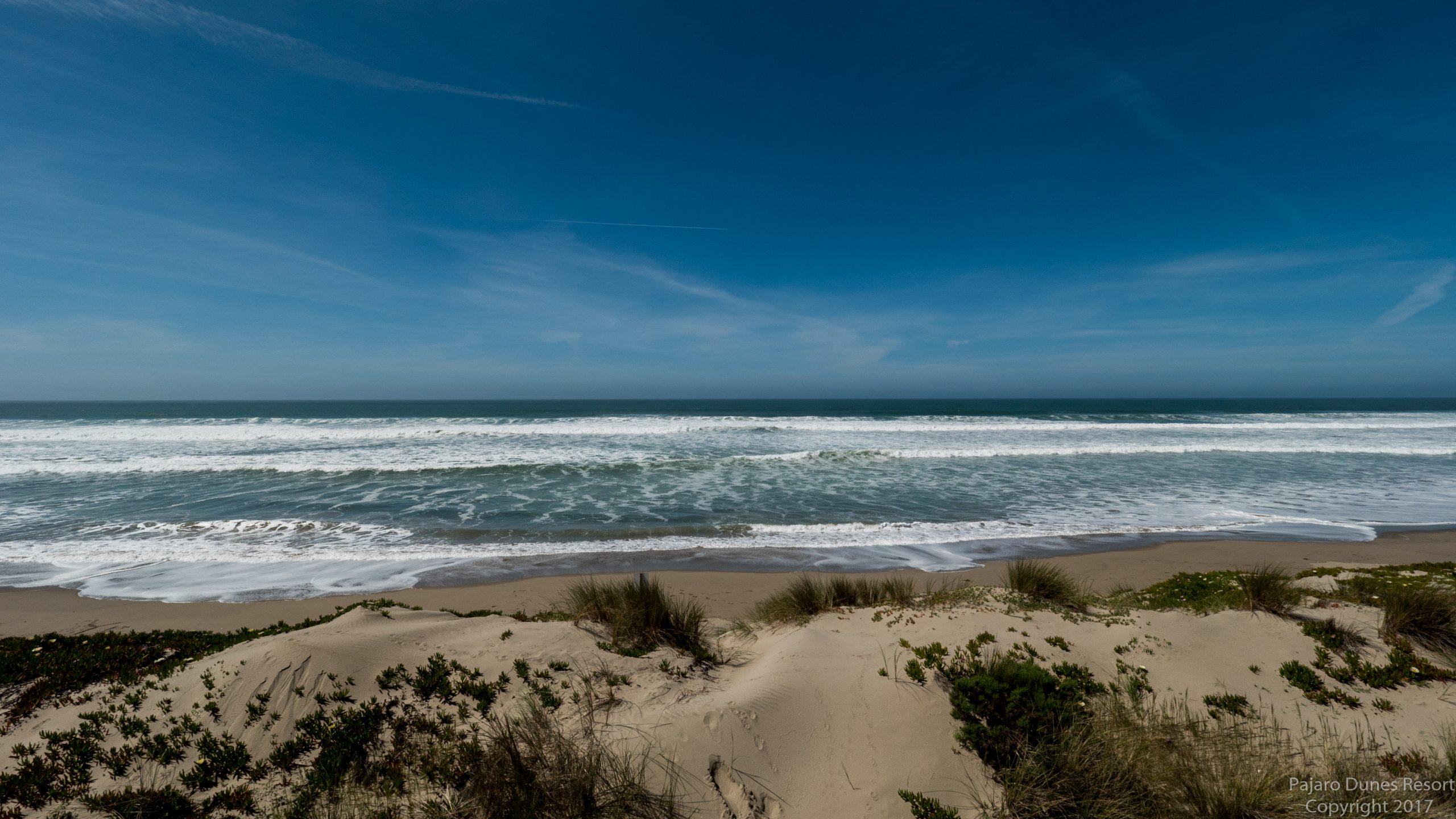 Pajaro Dunes Cypress 15 Image 3