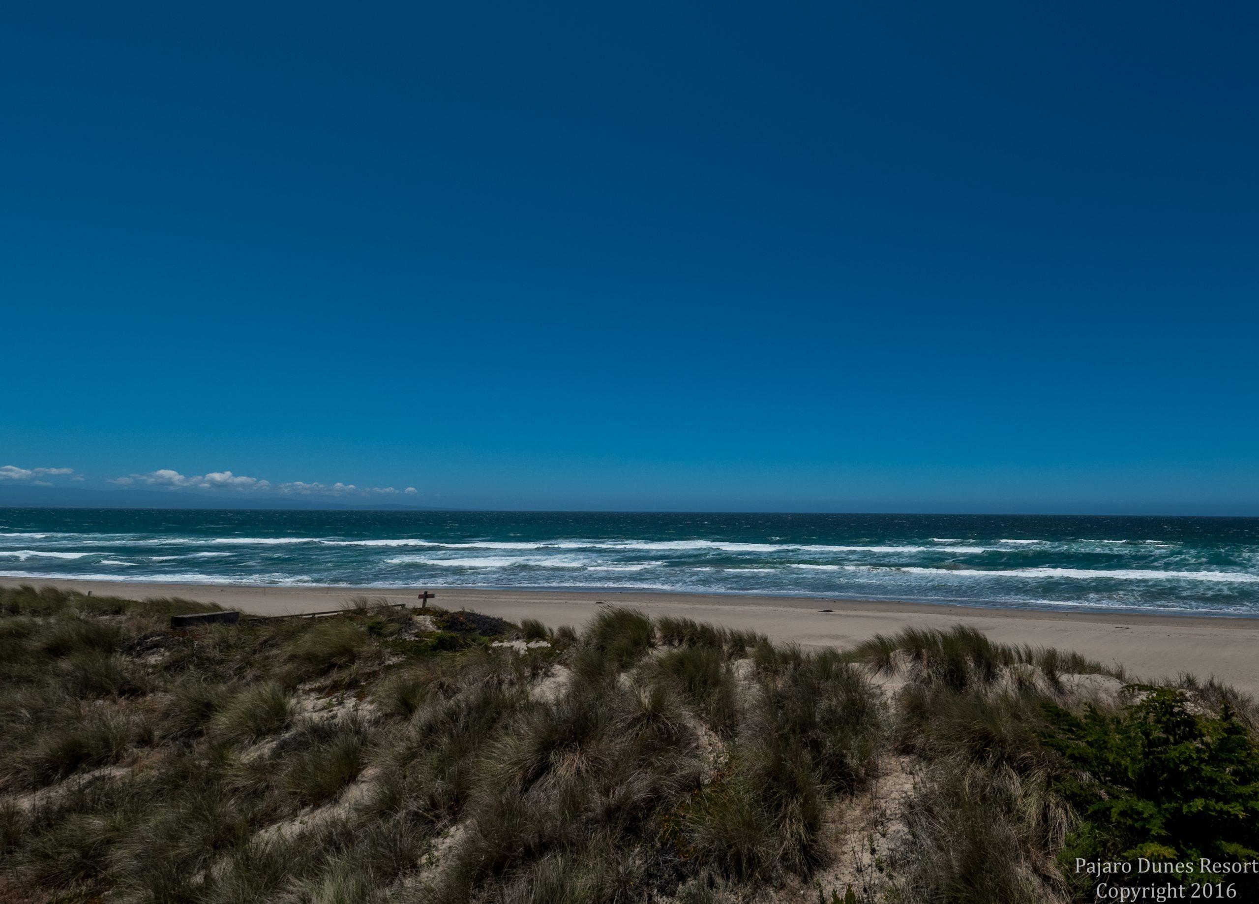 Pajaro Dunes Cypress 6 Image 3
