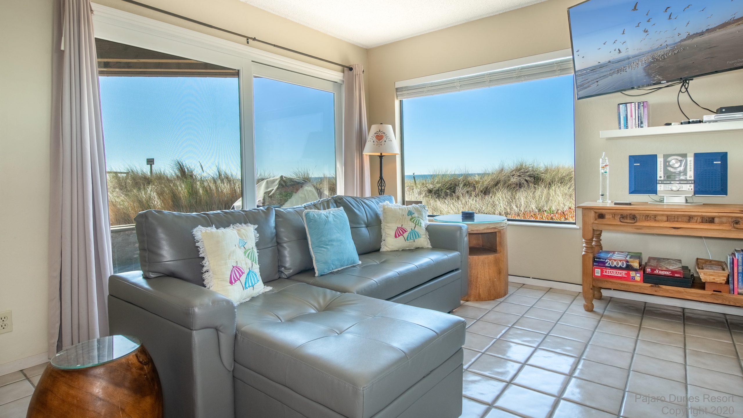 Pajaro Dunes Shorebirds 247